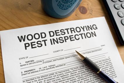 Termite Inspections Houston - Protex Pest Control